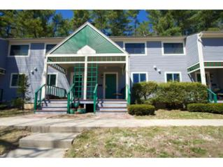 63  Spinnaker Way  63, Portsmouth, NH 03801 (MLS #4413349) :: Keller Williams Coastal Realty