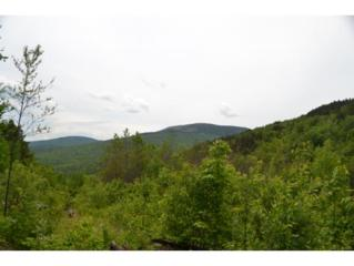 227 ac OFF  Welton Falls Rd  , Alexandria, NH 03222 (MLS #4418582) :: Carrington Real Estate Services