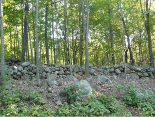 Lot 4  Stoneham Rd  , Brookfield, NH 03872 (MLS #4426081) :: Keller Williams Coastal Realty