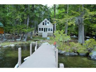 105  Cow Island  , Tuftonboro, NH 03816 (MLS #4426129) :: Keller Williams Coastal Realty