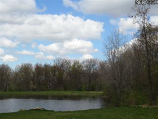 393  Arbor Falls Dr  S/L16, Medina, OH 44256 (MLS #3306855) :: Howard Hanna