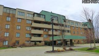 5200  Three Village Dr  Tb, Lyndhurst, OH 44124 (MLS #3471303) :: Howard Hanna