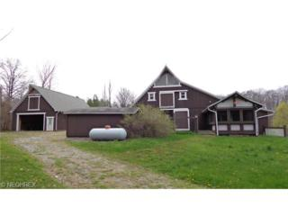 11750  Africa Acres Dr  , Chesterland, OH 44026 (MLS #3615976) :: Howard Hanna