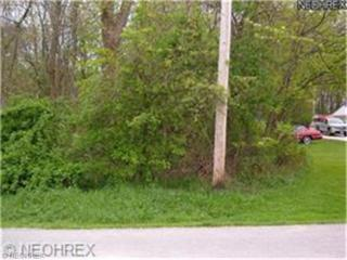 Glen Park  , Kirtland, OH 44094 (MLS #3629370) :: Howard Hanna