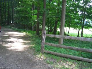 Little Mountain Rd  , Kirtland Hills, OH 44060 (MLS #3629751) :: Howard Hanna