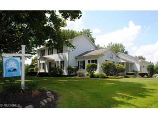 10990  Bell Rd  , Newbury, OH 44065 (MLS #3633298) :: Howard Hanna