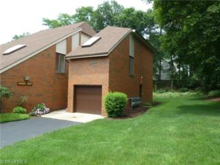 4695  Mayfield Rd  F, South Euclid, OH 44121 (MLS #3643979) :: Howard Hanna