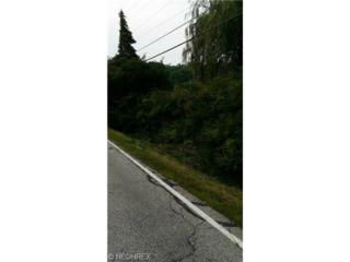 Hobart Rd  , Kirtland, OH 44094 (MLS #3645790) :: Howard Hanna