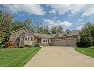 8395  Raleigh Pl  , Concord, OH 44077 (MLS #3648993) :: Platinum Real Estate