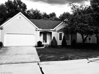 371  Pebblebrook Dr  , Willoughby Hills, OH 44094 (MLS #3649217) :: Howard Hanna