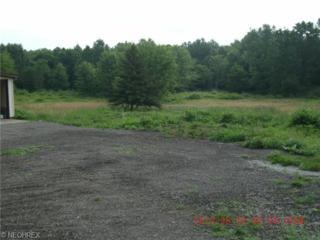 Milton Ave  , Lake Milton, OH 44429 (MLS #3649370) :: Howard Hanna