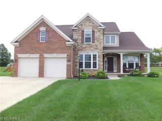 3023  Bickleigh Cir  , Akron, OH 44312 (MLS #3653039) :: RE/MAX Crossroads Properties
