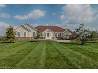 10860  Bluestone Lake Dr  , Mantua, OH 44255 (MLS #3653550) :: Platinum Real Estate