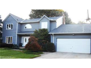 7237  Winchester Dr  , Solon, OH 44139 (MLS #3655001) :: Howard Hanna