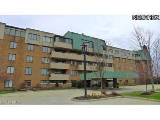 5200  Three Village Dr  Tb, Lyndhurst, OH 44124 (MLS #3657468) :: Howard Hanna