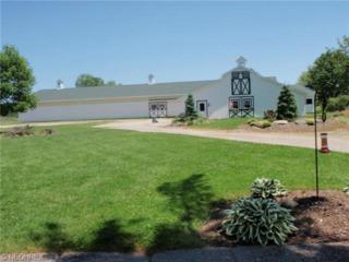14081  Bass Lake Rd  , Newbury, OH 44065 (MLS #3657824) :: Howard Hanna