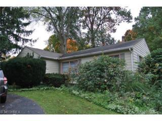 2582  Newton St  , Akron, OH 44305 (MLS #3661889) :: Howard Hanna