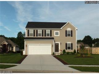 4118  Pembroke Dr  , Kent, OH 44240 (MLS #3662819) :: Platinum Real Estate