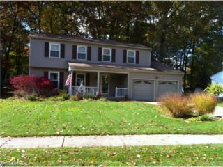 4462  Timberdale Dr  , Stow, OH 44224 (MLS #3662870) :: RE/MAX Edge Realty