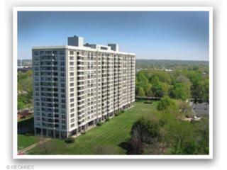 1  Lake Shore Blvd  308, Bratenahl, OH 44108 (MLS #3663507) :: Platinum Real Estate
