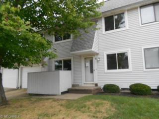 5509  Wildwood Ct  A, Willoughby, OH 44094 (MLS #3664472) :: Howard Hanna