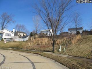 541  Queen Anns Pl  , Wadsworth, OH 44281 (MLS #3664497) :: RE/MAX Edge Realty