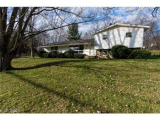 7031  Woodell Ave NE , Canton, OH 44721 (MLS #3667102) :: Howard Hanna