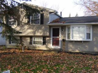 466  University Ave  , Elyria, OH 44035 (MLS #3668186) :: Howard Hanna