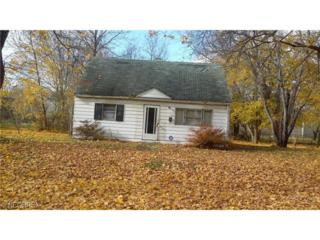1166  Frederick Blvd  , Akron, OH 44320 (MLS #3668509) :: RE/MAX Edge Realty