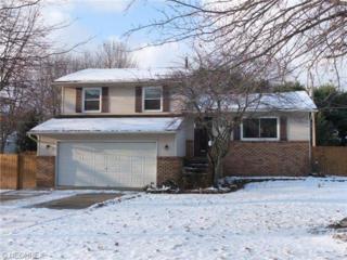 8061  Sapphire Ave NE , Canton, OH 44721 (MLS #3669264) :: RE/MAX Crossroads Properties
