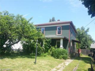 363  Eastwood St  , Geneva, OH 44041 (MLS #3669431) :: Platinum Real Estate