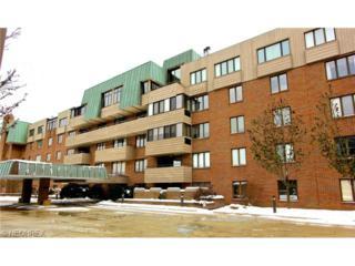5200  Three Village Dr  T-B, Lyndhurst, OH 44124 (MLS #3669636) :: Howard Hanna