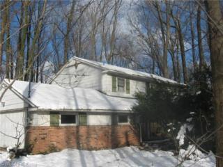 16504  Stagecoach Dr  , Garrettsville, OH 44231 (MLS #3670164) :: Platinum Real Estate