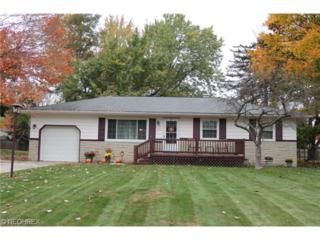 3423  Rebecca Dr  , Austintown, OH 44406 (MLS #3670171) :: Platinum Real Estate