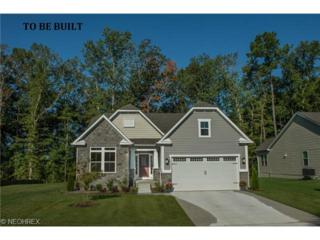 9777  Creekside Way  , Streetsboro, OH 44241 (MLS #3673560) :: Platinum Real Estate