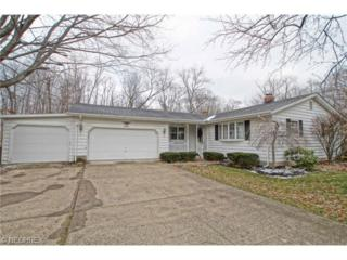 6143  Althea Dr  , Concord, OH 44077 (MLS #3673644) :: Howard Hanna