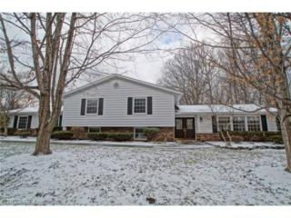 7910  Hermitage Rd  , Concord, OH 44077 (MLS #3673815) :: Howard Hanna