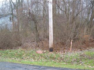 Glen Park Rd  , Kirtland, OH 44094 (MLS #3674019) :: Howard Hanna