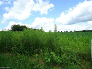 Barrs St SW , Massillon, OH 44647 (MLS #3677305) :: RE/MAX Crossroads Properties
