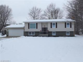4295  Suttle Dr  , Norton, OH 44203 (MLS #3677927) :: RE/MAX Crossroads Properties