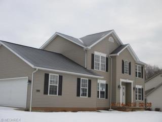 9379  Rapid Falls St NW , Massillon, OH 44647 (MLS #3678028) :: Platinum Real Estate
