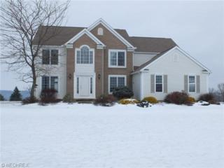 4795  Alabama Ave NW , North Lawrence, OH 44666 (MLS #3679574) :: RE/MAX Crossroads Properties