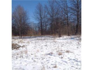 2773  Rockefeller Rd  , Willoughby Hills, OH 44092 (MLS #3680837) :: Howard Hanna