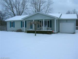 3595  Durst Clagg Rd  , Cortland, OH 44410 (MLS #3681156) :: RE/MAX Edge Realty
