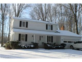 1999  Porter Rd  , Atwater, OH 44201 (MLS #3681228) :: Platinum Real Estate