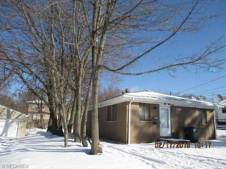 1343-1345  Laffer Ave  , Akron, OH 44305 (MLS #3685376) :: Howard Hanna