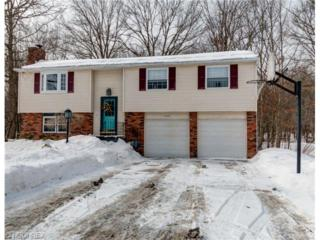 9900  Pebble Beach Cove  , Reminderville, OH 44202 (MLS #3685545) :: Platinum Real Estate