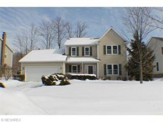 2160  Meadowood Blvd  , Twinsburg, OH 44087 (MLS #3686865) :: Platinum Real Estate