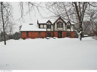 9463  Knights Way  , Brecksville, OH 44141 (MLS #3687675) :: Platinum Real Estate