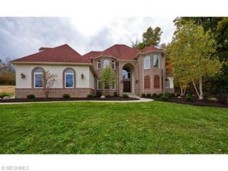 3679 W Galloway Dr  , Richfield, OH 44286 (MLS #3688319) :: RE/MAX Crossroads Properties